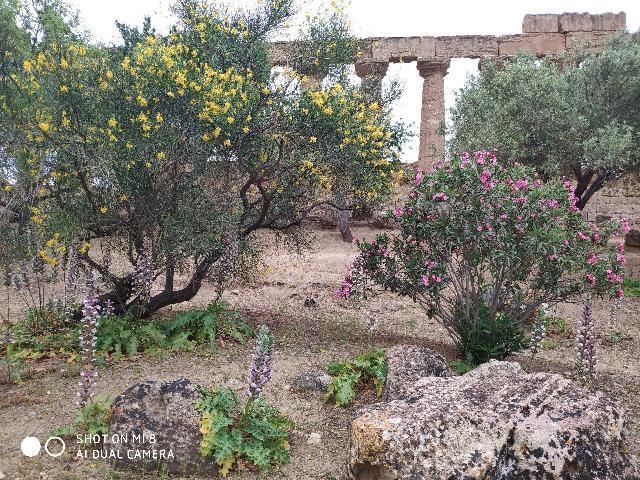 Hotel Kalos Giardini Naxos Olaszország Italieonline