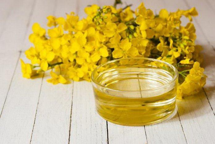 A sáfrányolaj egészséges. Camelina olaj: előnyök és ártalmak, hogyan lehet fogyni