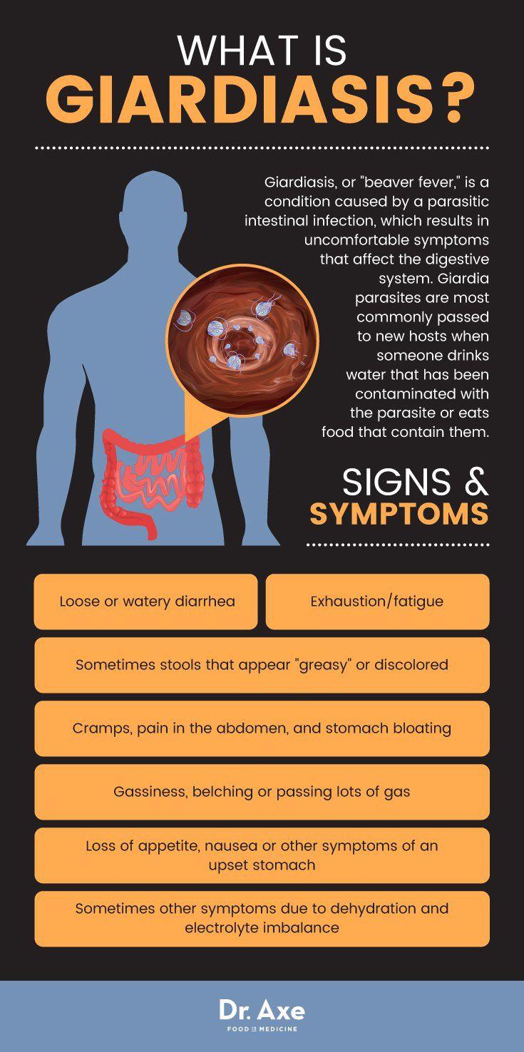 giardia infection what to eat