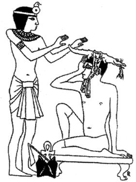 gyógynövény férgek Egyiptomból