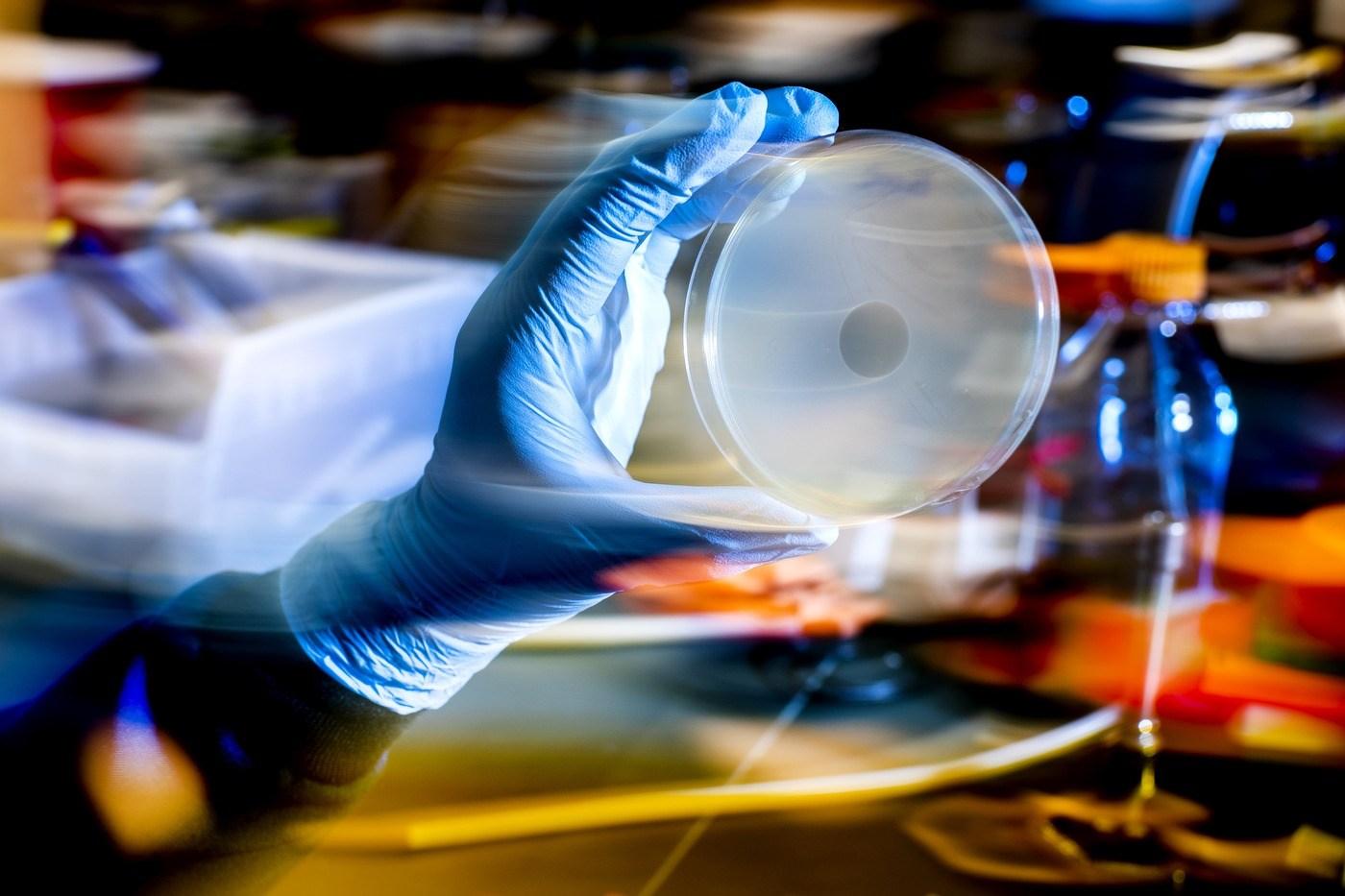 új gyógyszerek a paraziták számára