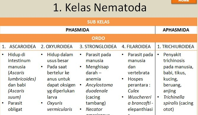 milyen gyógyszereket lehet venni a paraziták megelőzésére