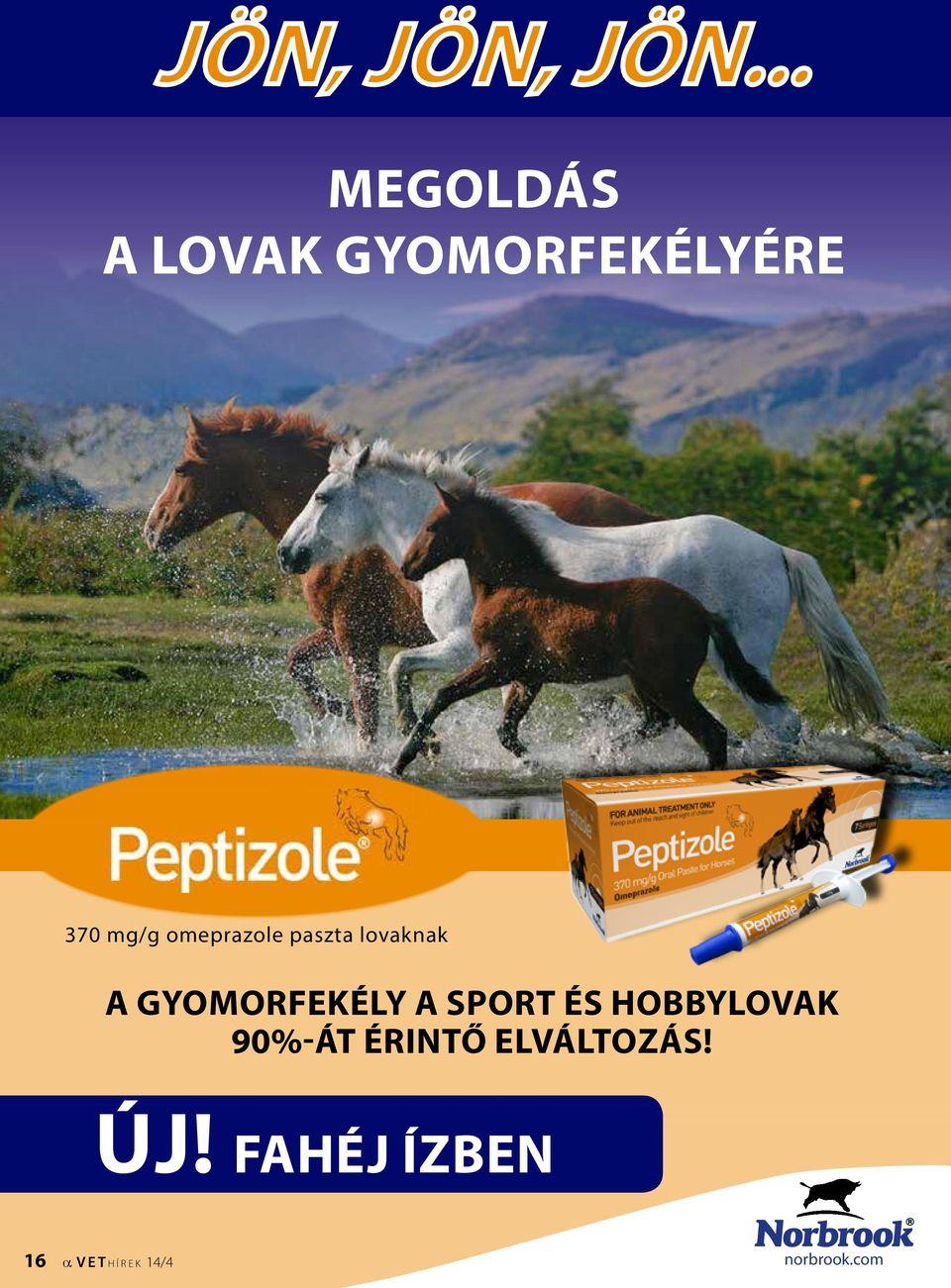 Equi-med Kft | Lovas állatorvos