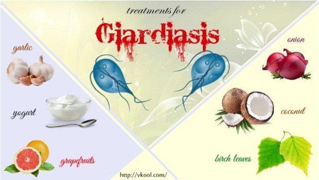 férgek paraziták gyógyszerek