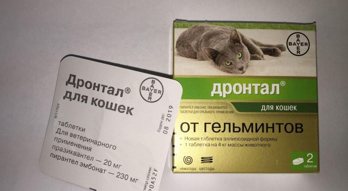 egy egyszerű gyógyszer a helminták számára
