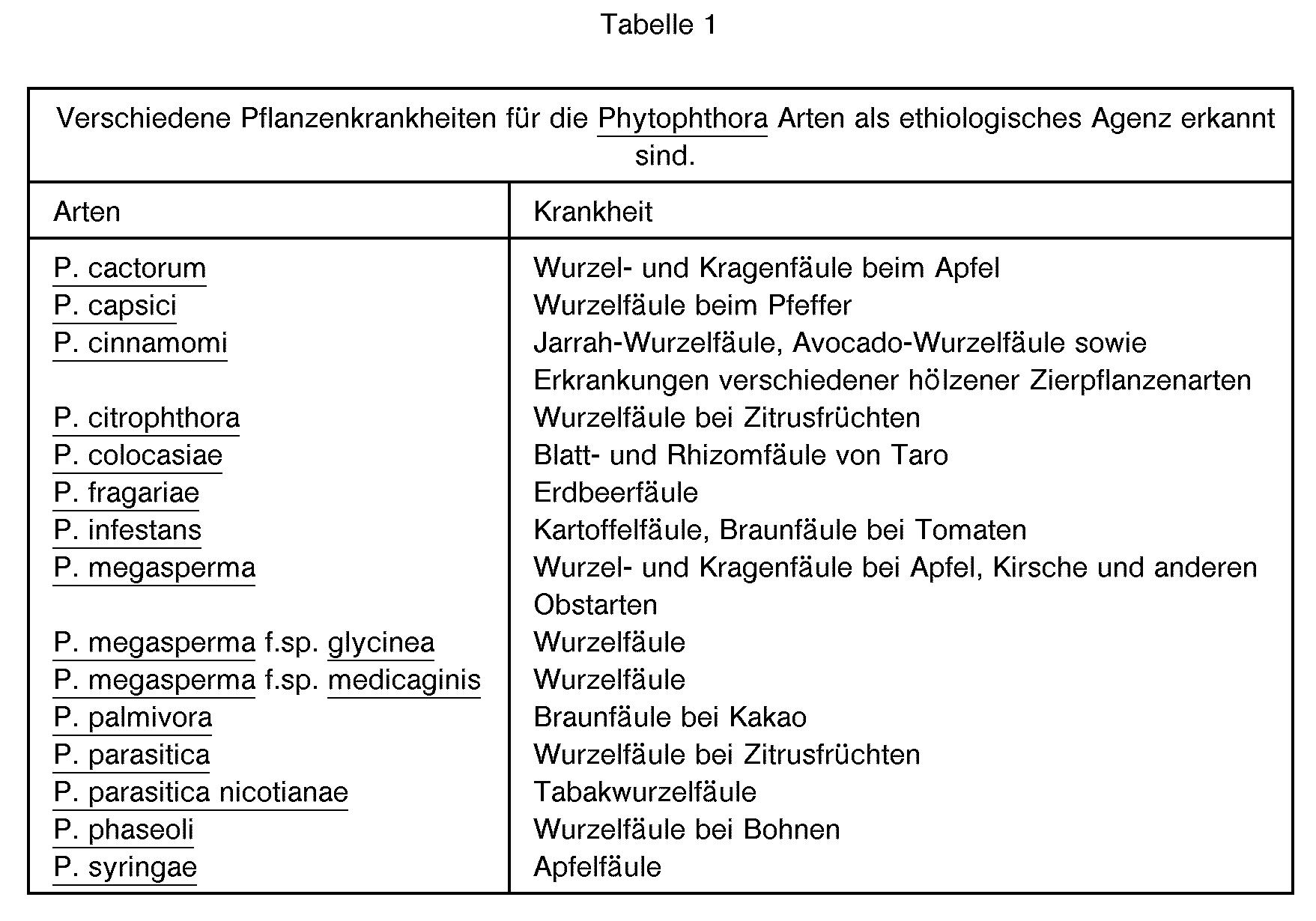 giardiasis protokoll
