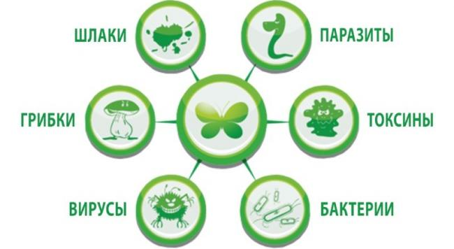 intézkedések a helminth betegségek megelőzésére