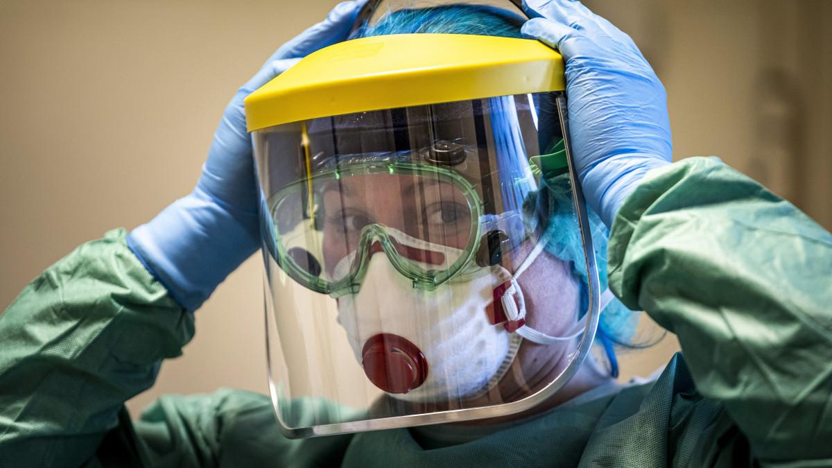 Helmint tisztító módszer - eukaliptusz olaj ,új gyógymód a széles spektrumú helmintákra