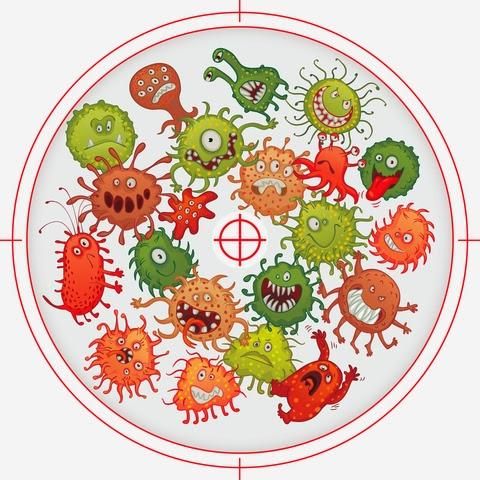 Paraziták herxheimer reakcióval. IBS Diéták