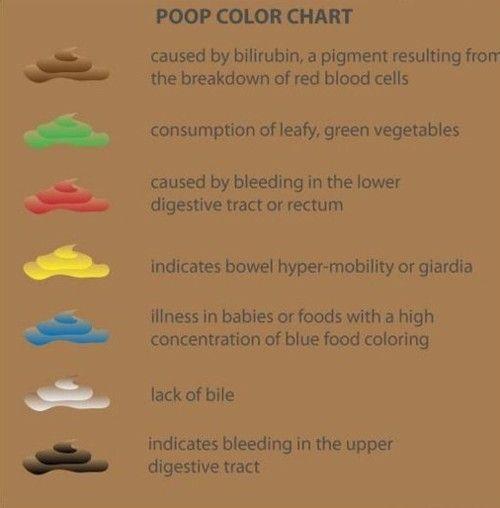 A széklet színe egy felnőttnél - Élelmiszer