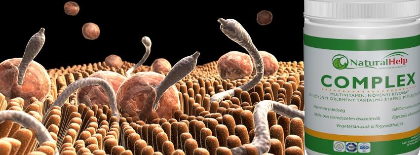 béltisztító paraziták gyógyszer