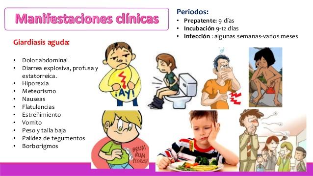 giardiasis humanos sintomas