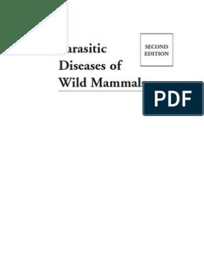 parazita eva passage