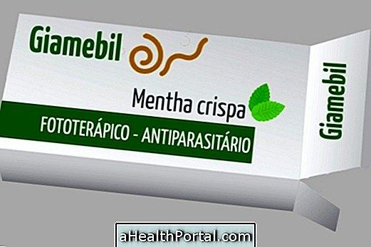 parazita receptúr ura a platyhelminth példa