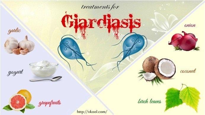 giardia without antibiotics