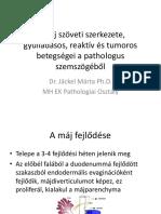 kiterjesztett spektrumú parazitaellenes gyógyszerek