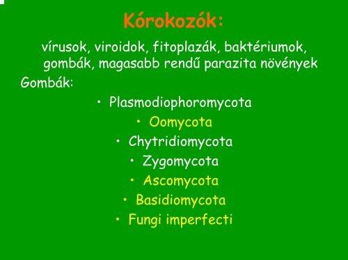 vizelet protozoa giardini naxos urlaub erfahrungen
