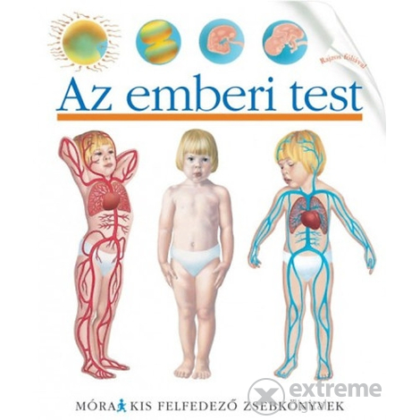 A férgek tünetei gyermekeknél, a gyógyszerek és a népi gyógyszerek hatékony kezelése és megelőzése