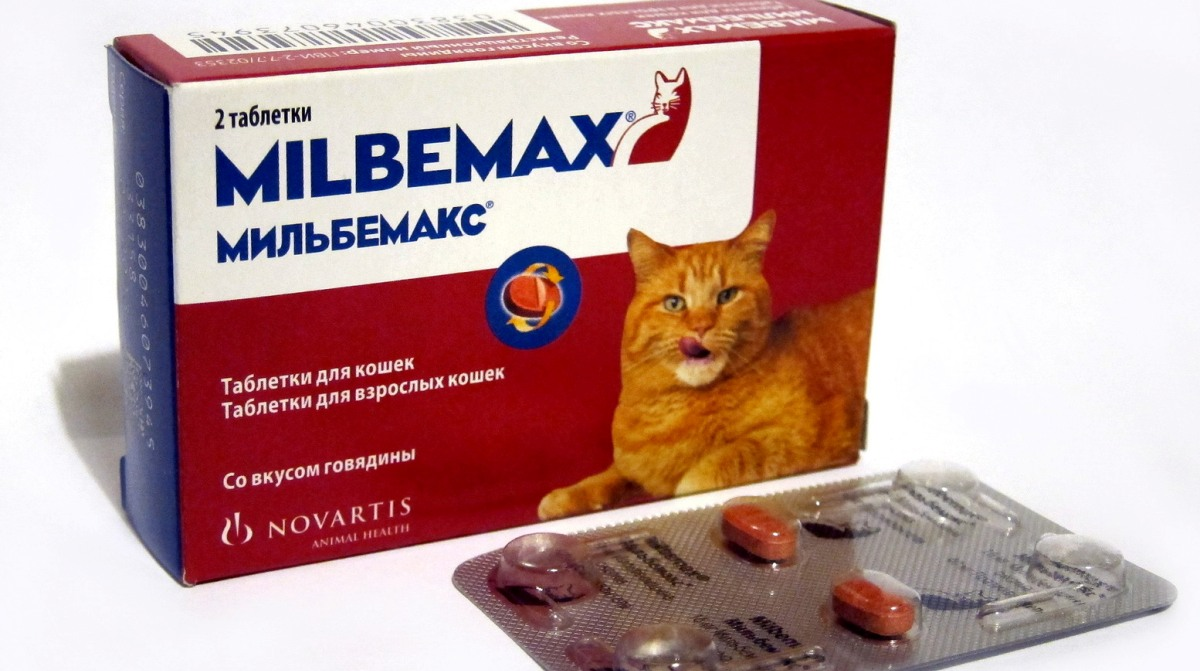 tabletták férgektől korábban