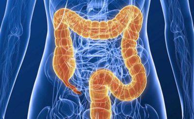 parazitakezelő tabletták a parazitak elso jelei az emberi testben