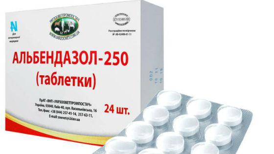 parazitaellenes testtisztítás férgek és más paraziták gyógyszerei