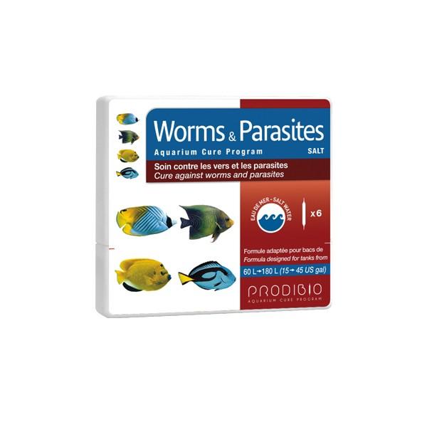 A pinworms gyakran megjelenik
