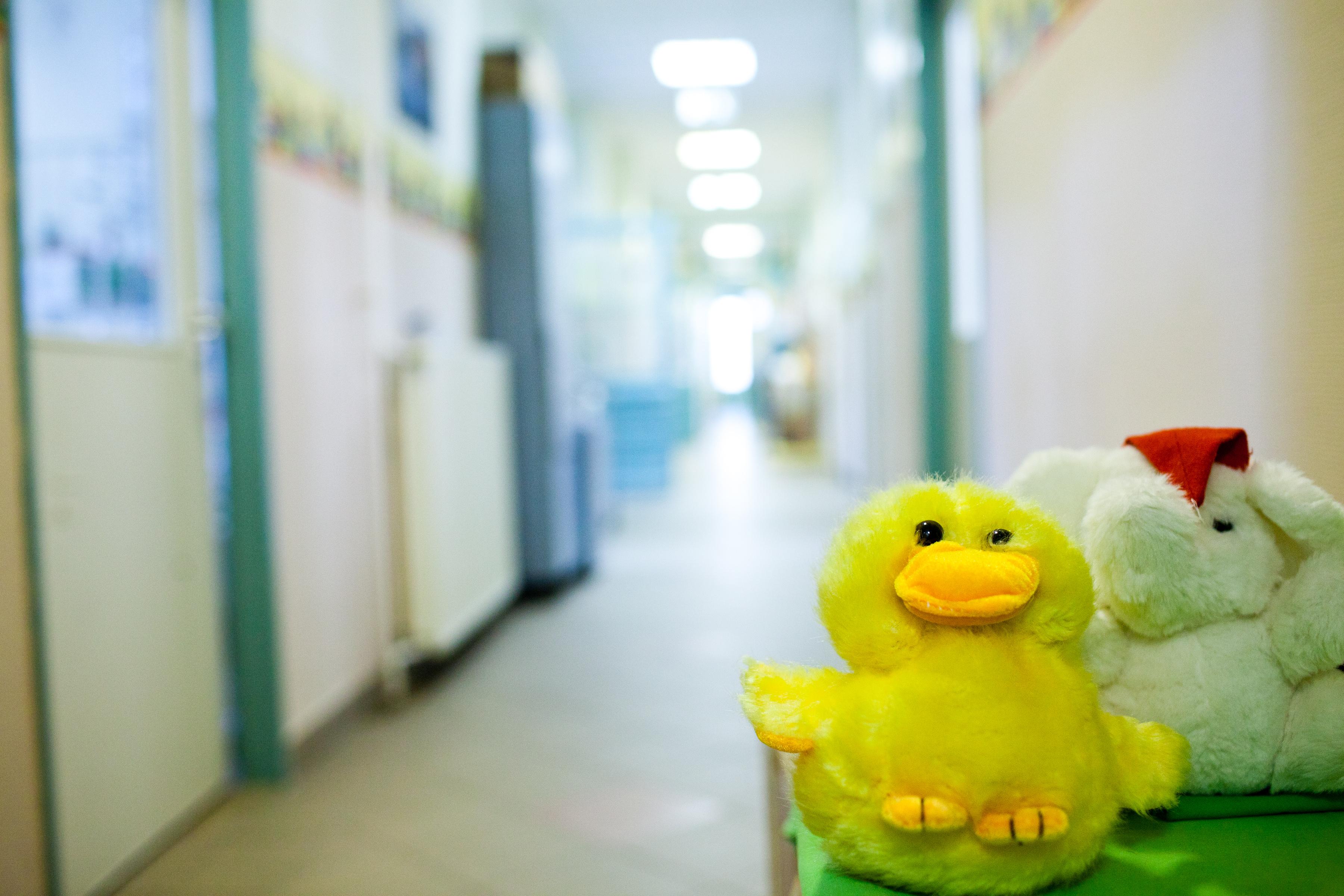 férgek kezelése 4 éves gyermekeknél giardia outbreak nz